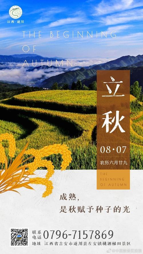 壁纸成片种植风景植物种植基地桌面6901227竖版竖屏手机