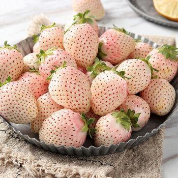 红颜水果白雪公主奶油香草莓整箱应当季 大果【火爆】 1斤【试吃装】