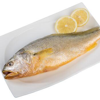 黄花鱼 3斤新鲜大黄花鱼冷冻鲜活海捕黄花鱼生深海黄鱼海鲜鱼批发